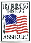 TRY BURNING THIS FLAG ASSHOLE